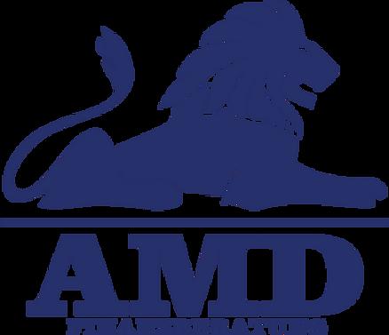 AMD%20FINANZ_edited.png
