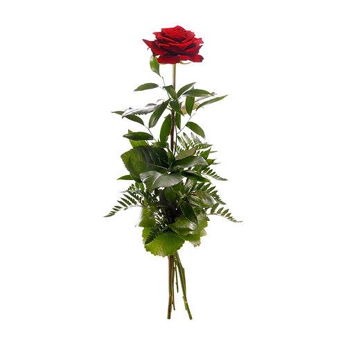 Rød rose (Vælg selv antal)
