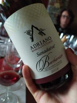 Piemonte vino cantina Adriano Sanadaive