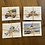 Thumbnail: Martha's Vineyard Card Set #2