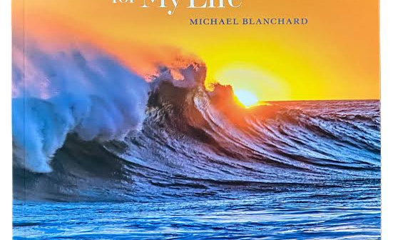 Fighting for my Life by Michael Blanchard