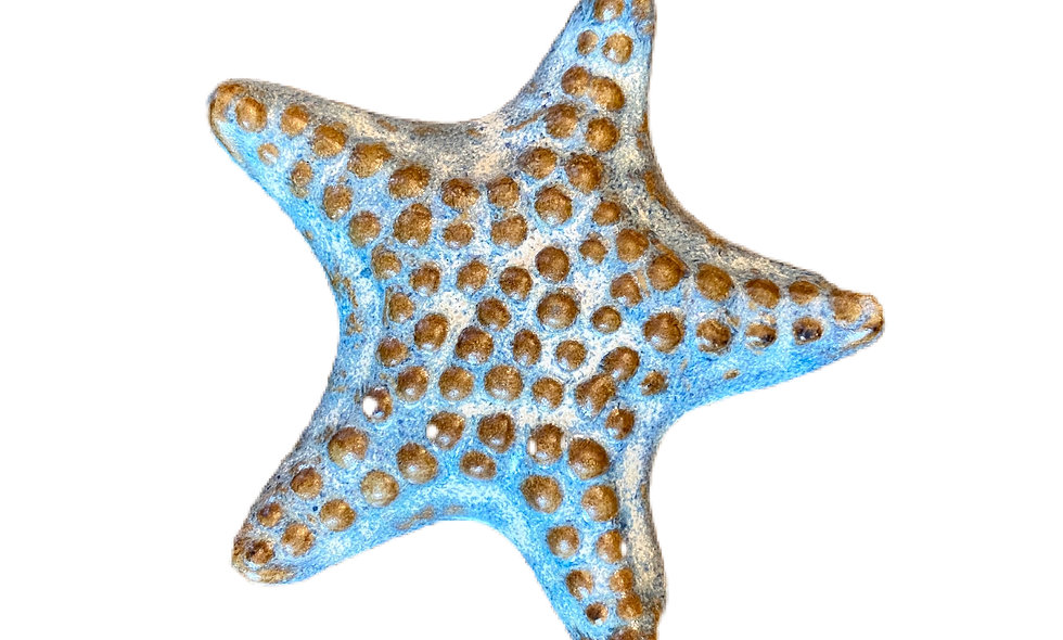 Sea Scape Starfish Paper Weight