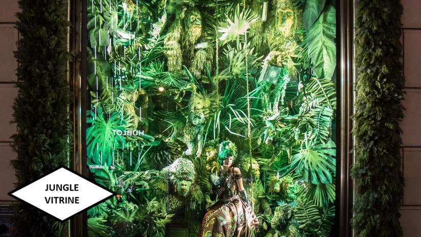 Jungle vitrine