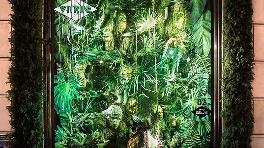 Jungle vitrine.jpg