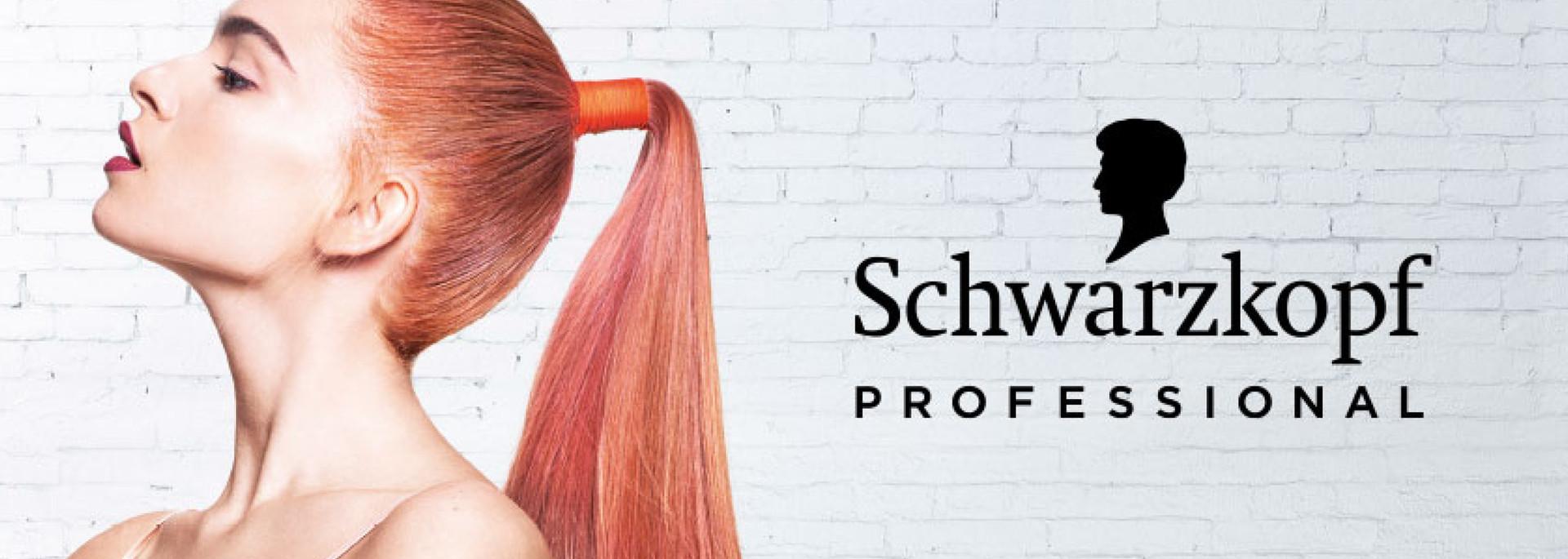 Principles Hair Design Hair Salon Hair Dressers