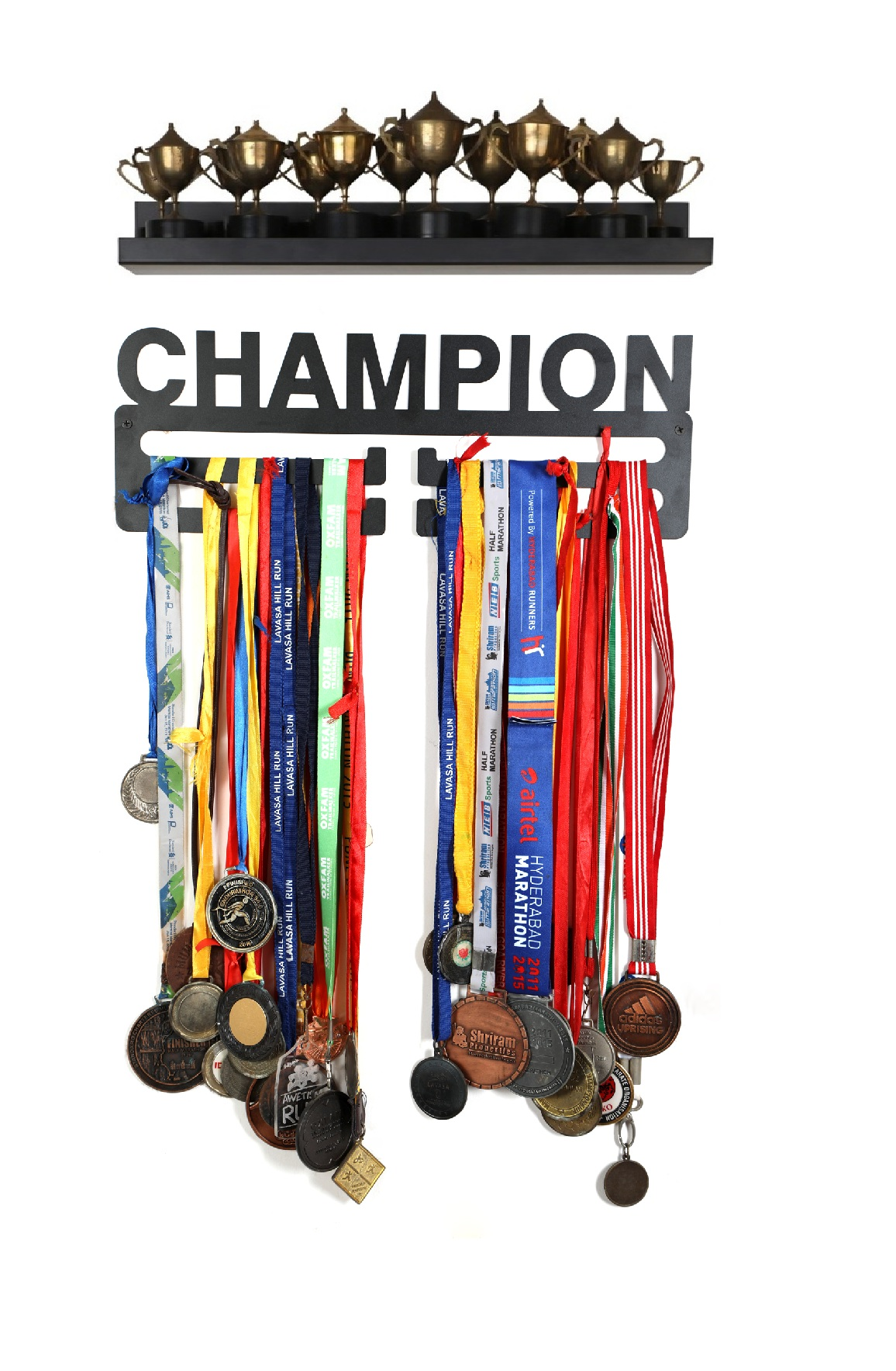 Champion + Trophy Shelf 002