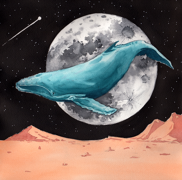 WhaleinSpace.png