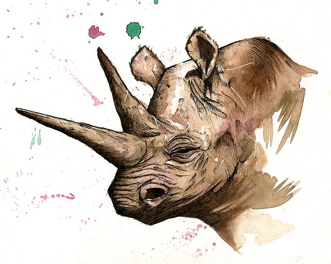rhinosoreass.png