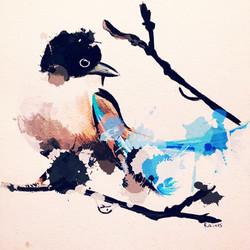True-Colors-Bird-hi-res