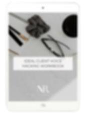 Ideal-Client-Voice-Hacking-Workbook.jpg