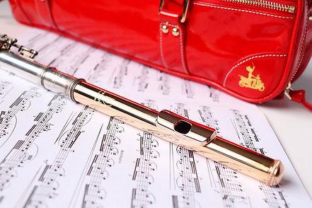 Fluterscooter Red Bag.jpg