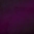 Purple Texture Moulton.png