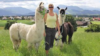 Ein Spaziergang mit dem Lama