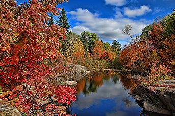 Canada & New England Fall Foliage Cruise