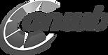 Logo ANWB.png