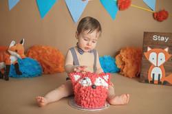 Vaughan Cake Smash Photography