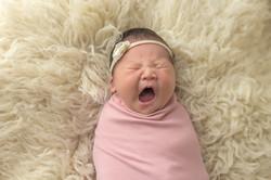 markham newborn photographer