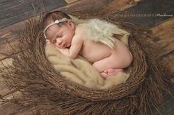 king city newborn photographer