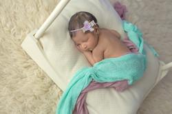 maple newborn photographer