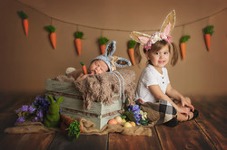 vaughan newborn photographer