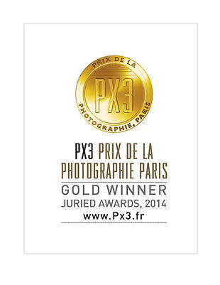 Px3-2014-Gold.jpg