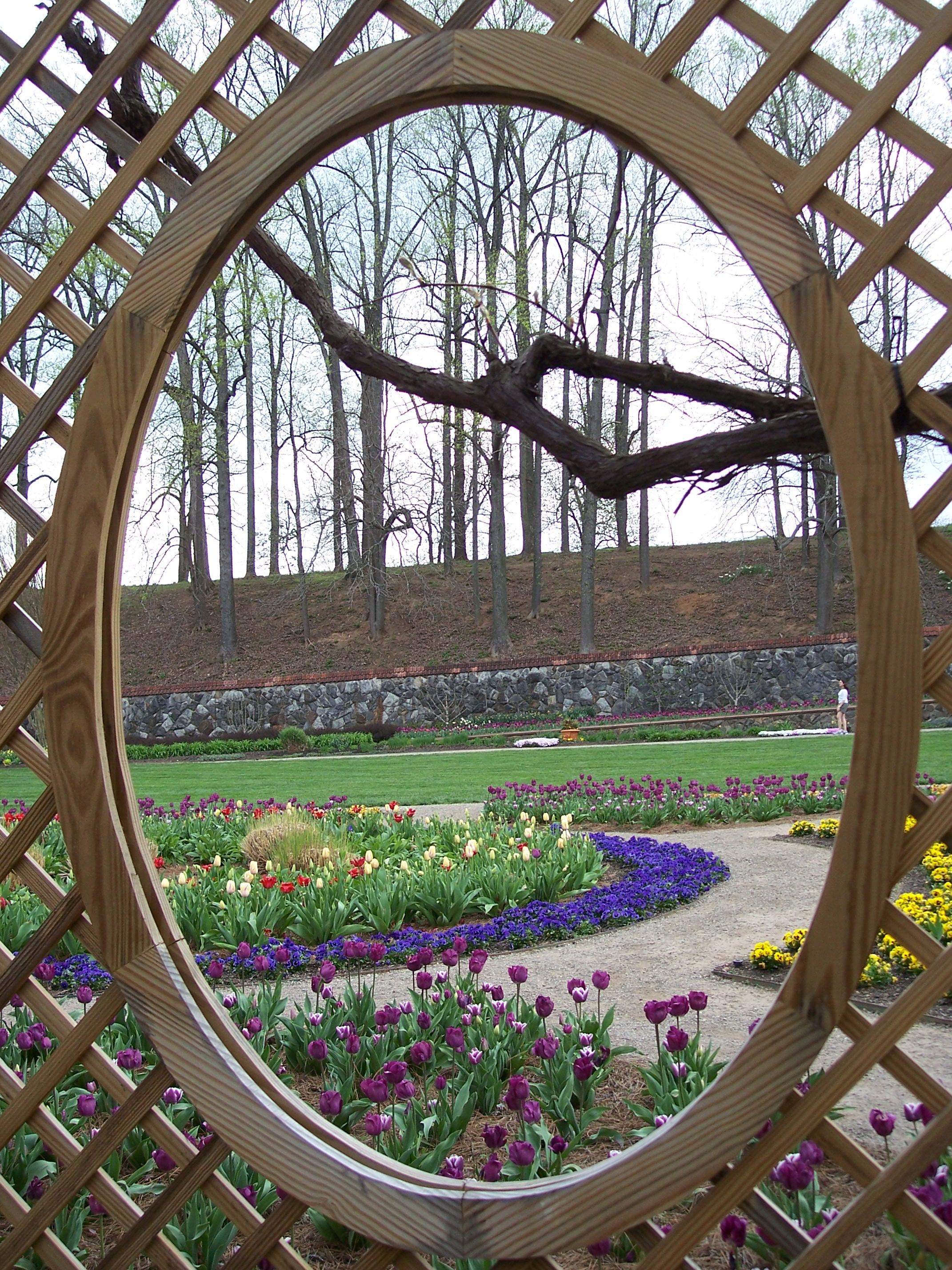 Trellis Window Garden