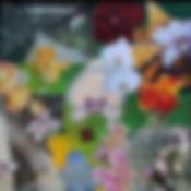 flowered travels_edited.jpg