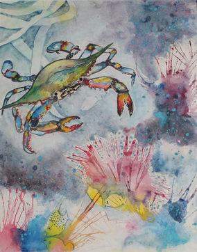 Colorful Crab