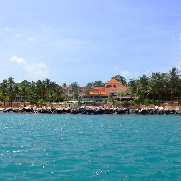 Sea of Paradise