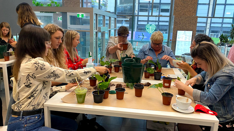 Latte and Plant Propagation Workshops