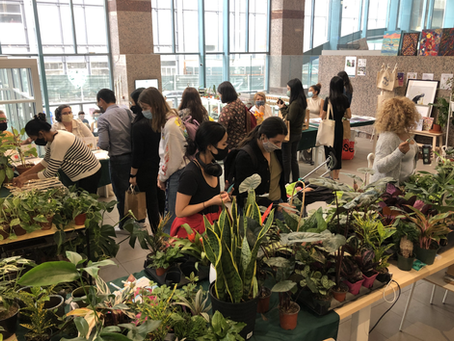 Community, Connection & Supporting Wellness