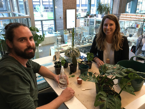 Plant Care Workshops: learn about plant propagation with your community and friends