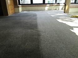 Carpet Restoration Kalamazoo