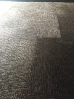 Carpet Restoration Portage