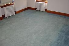 Carpet Stain Kalamazoo