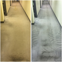 Carpet Cleaning Portage