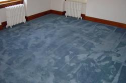 Dyed Carpet