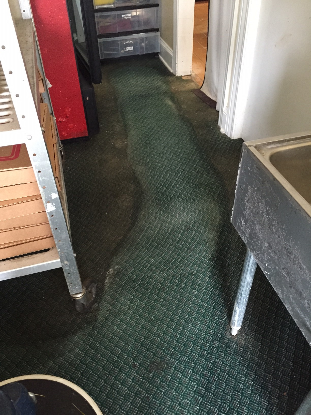 Carpet Cleaning Kalamazoo