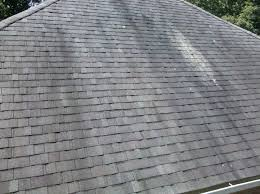 Roof Mold Kalamazoo