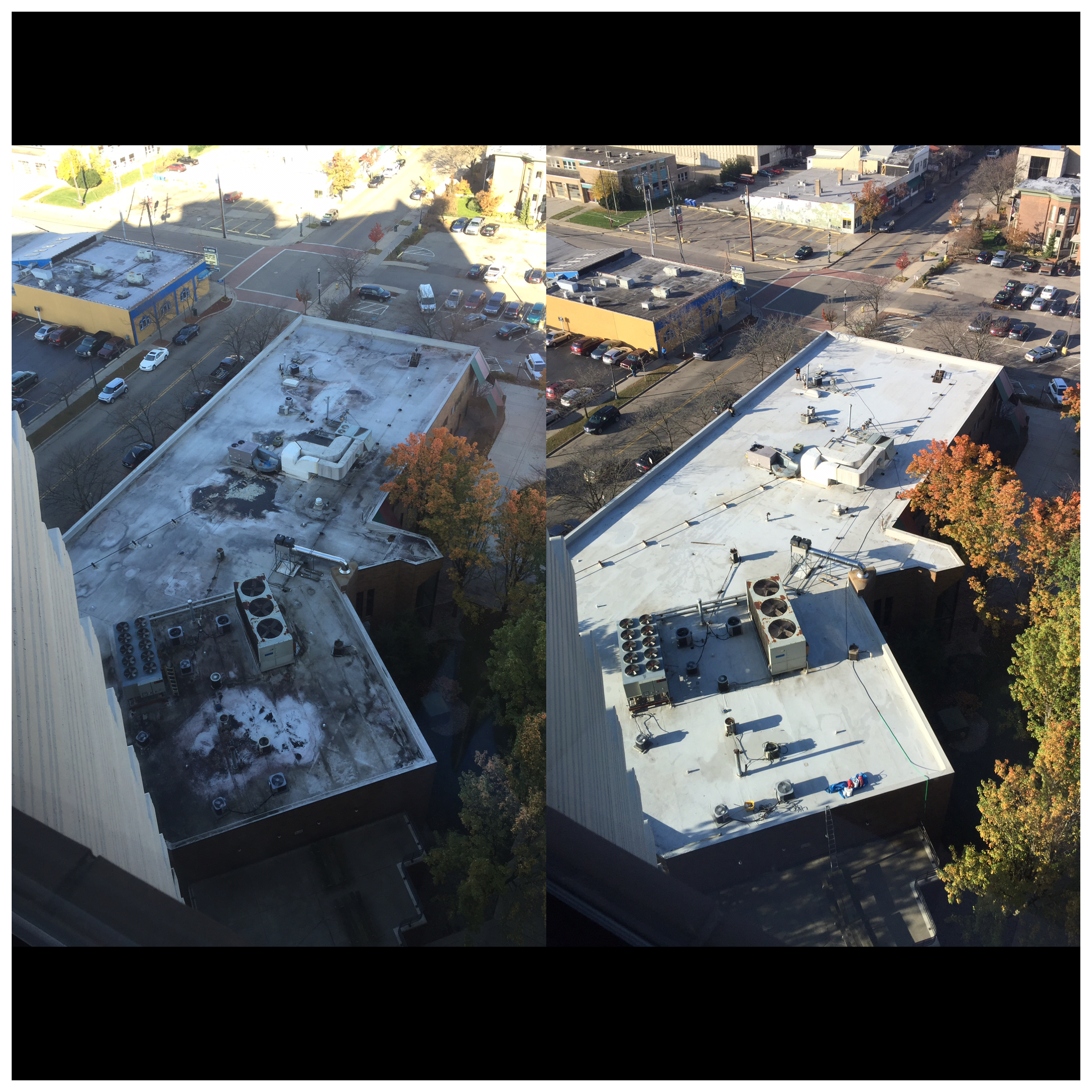 Commercial Roof Cleaning Kalamazoo