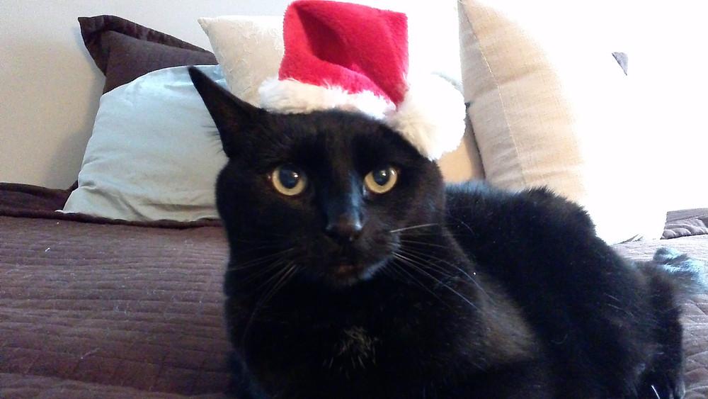 Echo Celebrates the Holidays