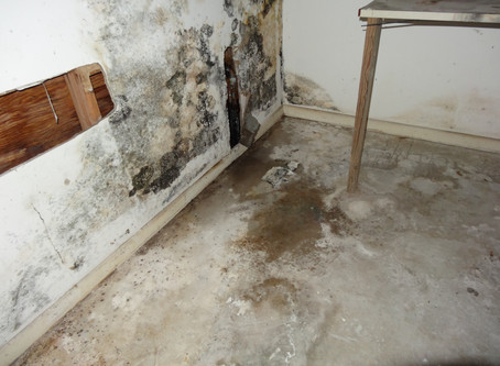 This is what a water leak can do!
