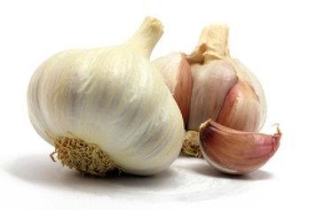NZ Organic Garlic
