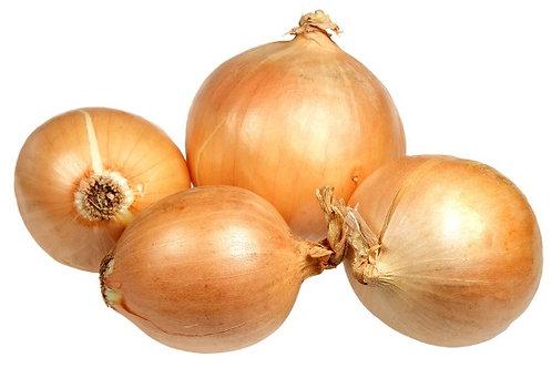 Organic Onions - Brown
