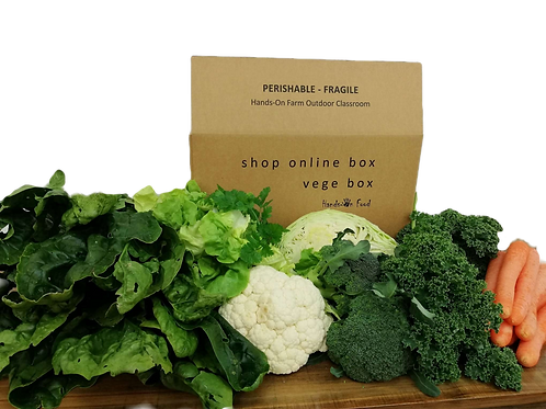 Organic Vege Box - Small