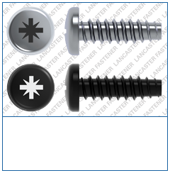 Cross Recess (Z)  Pan  Plas-Fix 45 Screw