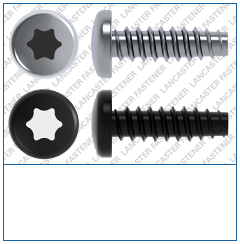 T-Drive  Pan  Plas-Fix 45 Screw  Steel