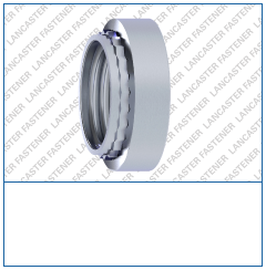 Clinch Nut Steel  Zinc Plated (CR3).png