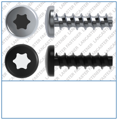 T-Drive  Pan  Plas-Tech 30 Screw  Steel