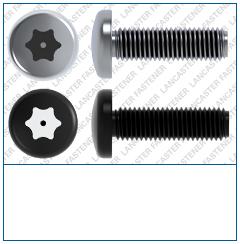 Pin T-Drive  Pan  PROTECTOR 4  DIN 7985